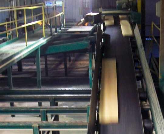 Boards on conveyor to edger.