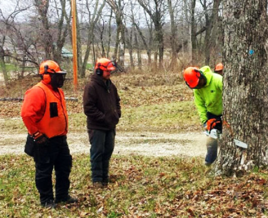 FISTA Training; All persons using a chain saw at KFP are FISTA trained.