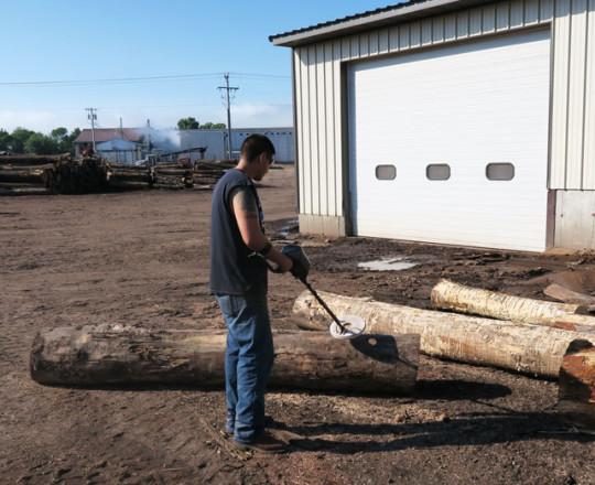 Debarker Operator using a hand-held metal detector on logs.