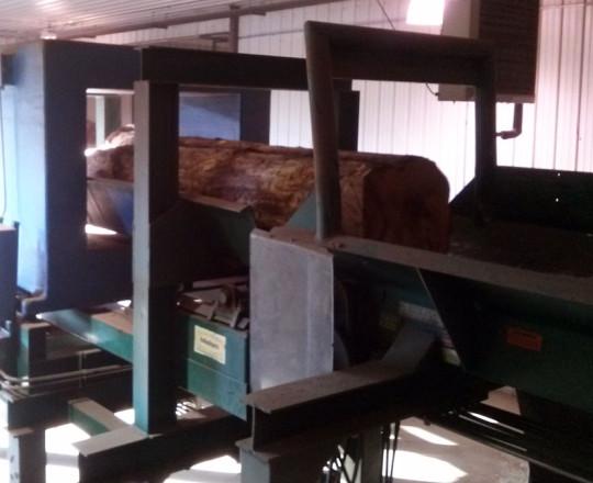 Logs entering metal detector.