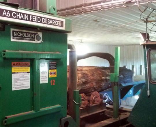 Logs entering debarker.