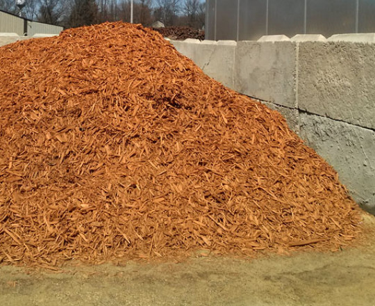 Gold Mulch