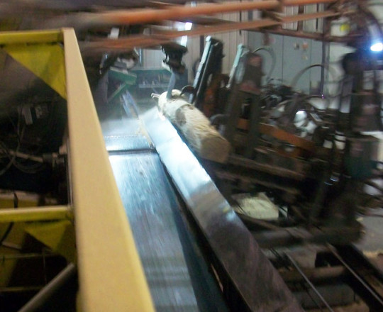A view of the Head Saw from outside of the cab.