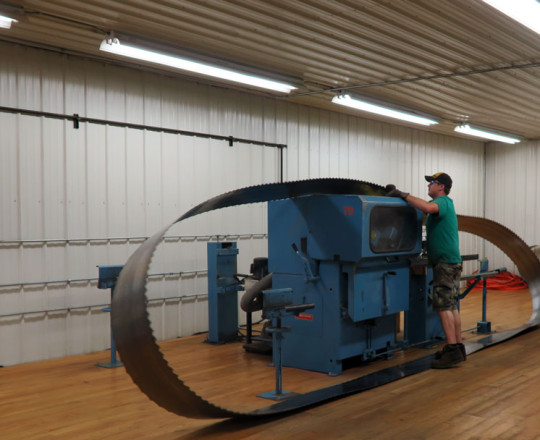Loading the saws on the sharpener.
