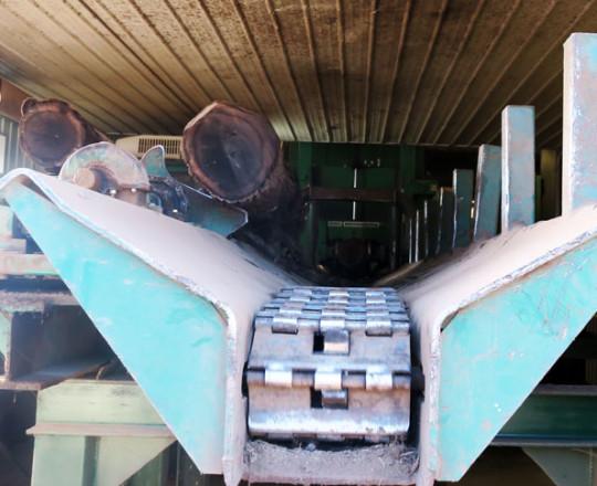 Log leaving the debarker deck and entering the debarker conveyor.