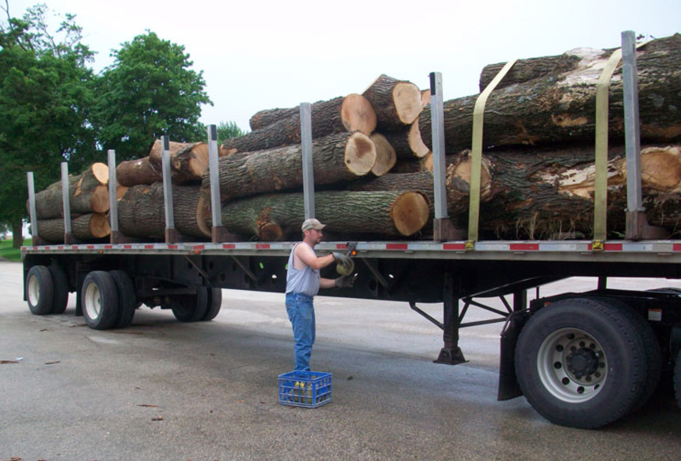 Trucker, Jared Groth, preparing to unload in the log yard.