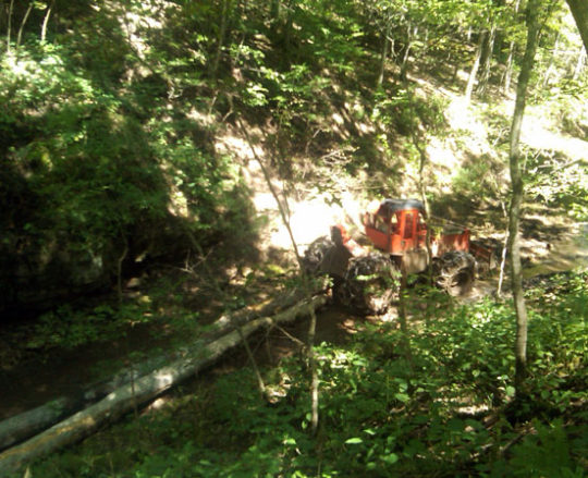 Pulling logs out of timber with a skidder
