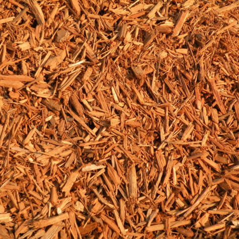 gold-mulch